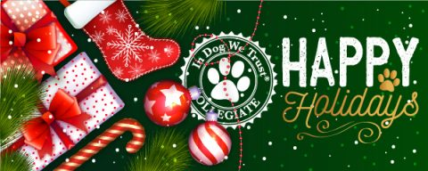 Happy Holidays, From The In Dog We Trust Collegiate Team to Yours!
