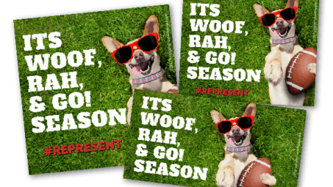 It's College Bowl Season! Pet Spirit Wear Can Help #Represent